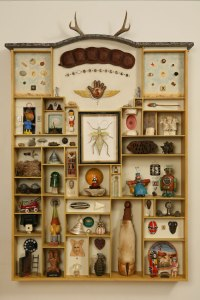 object-wunderkammer